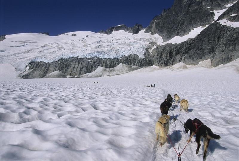 Mendenhall Glacier Dog Sledding Video