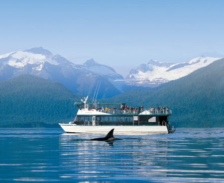 https://truealaskantours.com/wp-content/uploads/2015/12/WQOPL-1-wildlife-sightseeing-cruise1-450x368.jpg