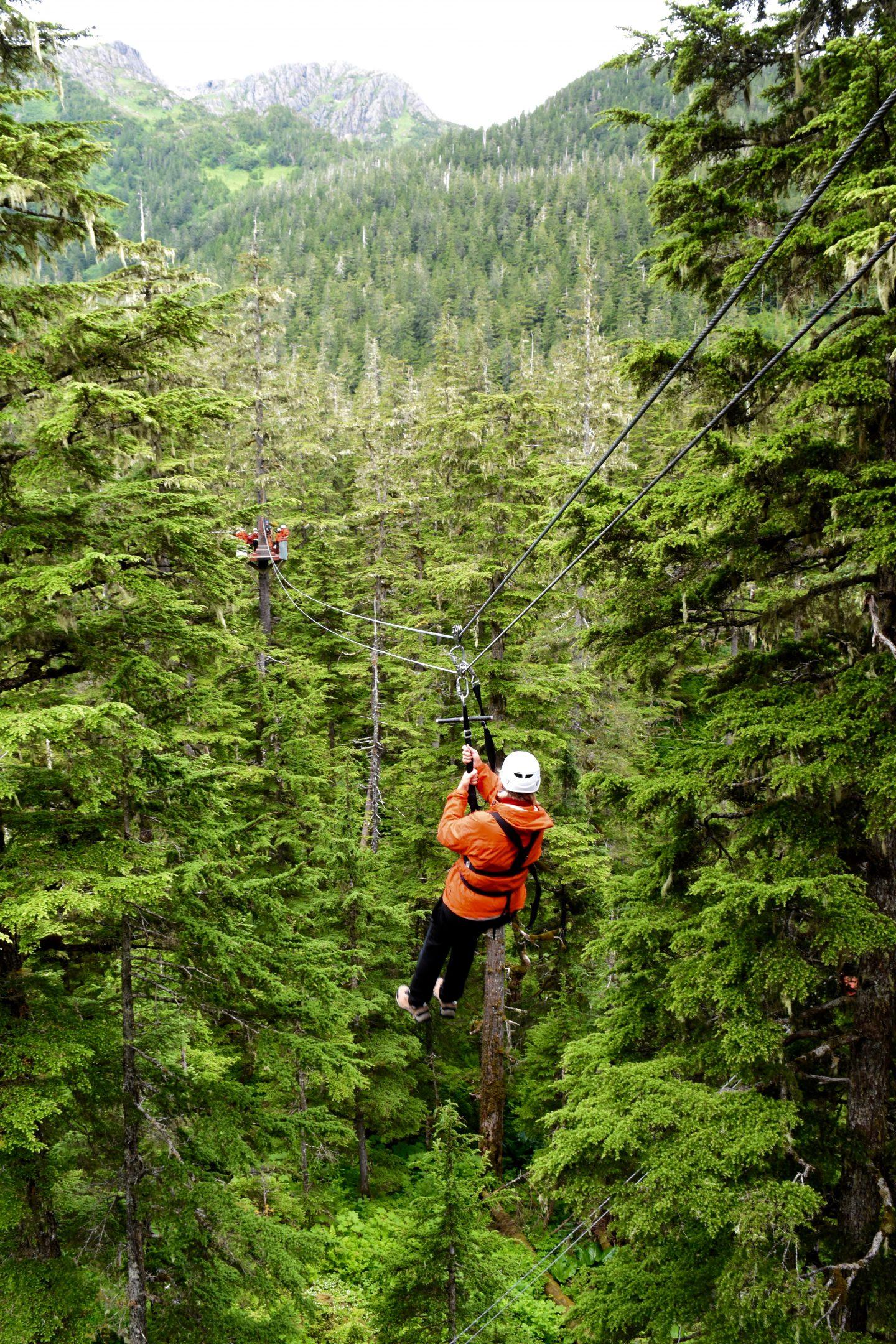 Alaska S Ultimate Canopy Amp Zipline Expedition Juneau True Alaskan Tours